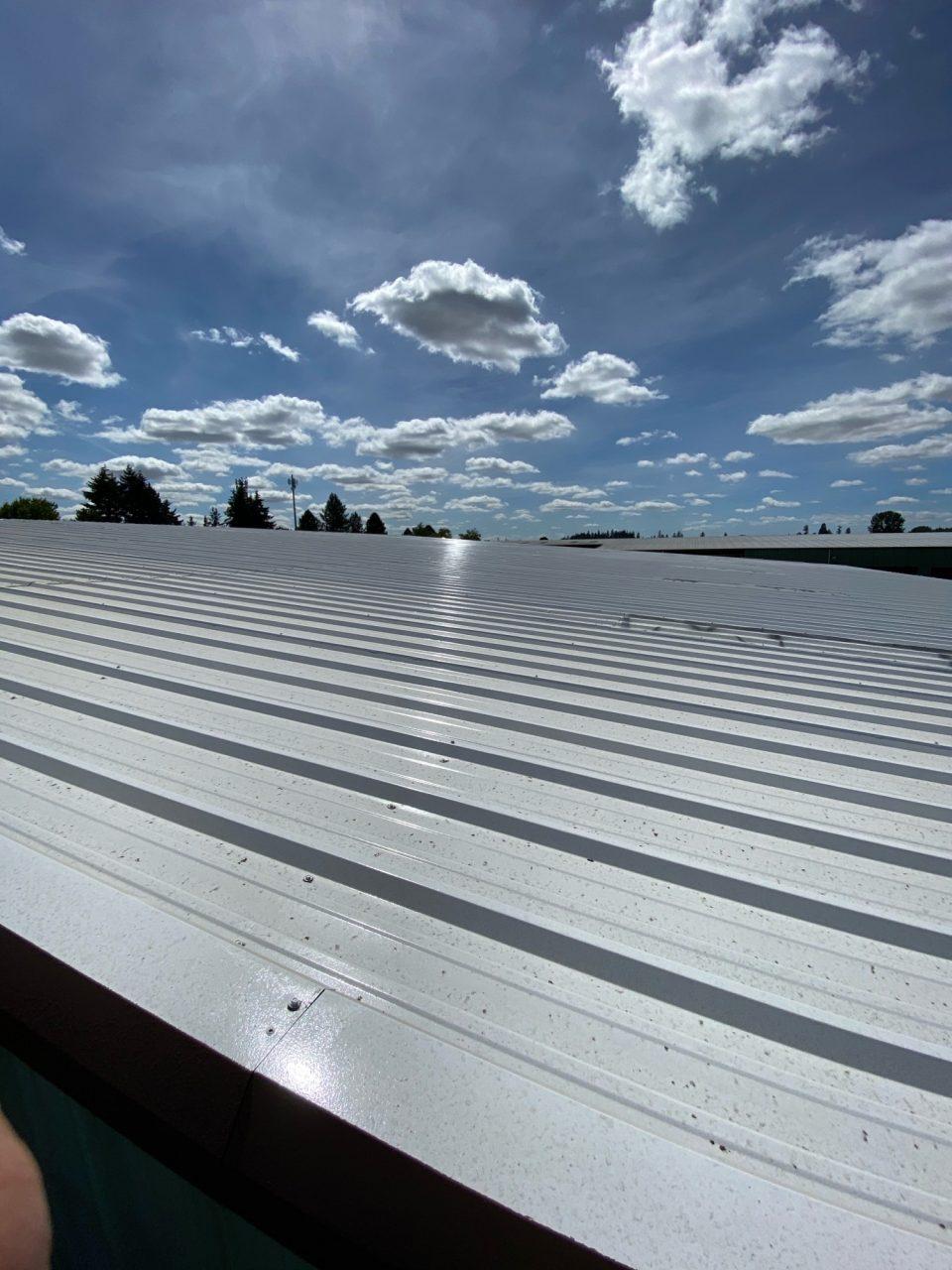 Industrial Metal Roof Painting